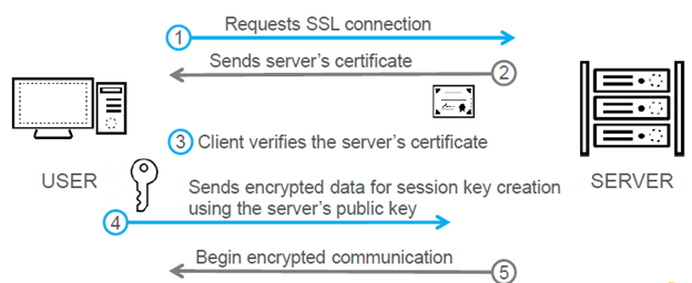SSL Decryption_Fig2